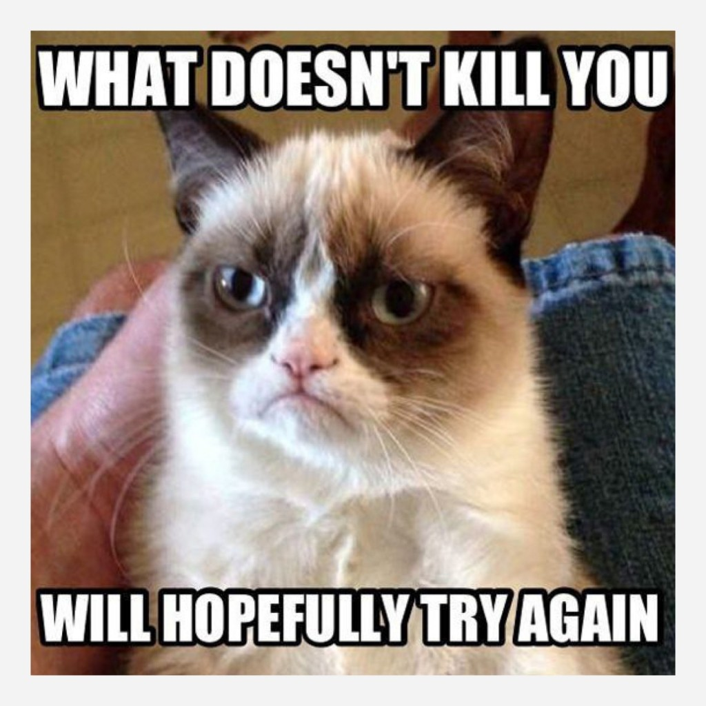 Grumpy_cat_quotes_no-6